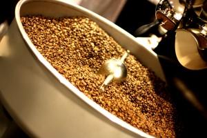 Nyrostat kaffe Barista Camp